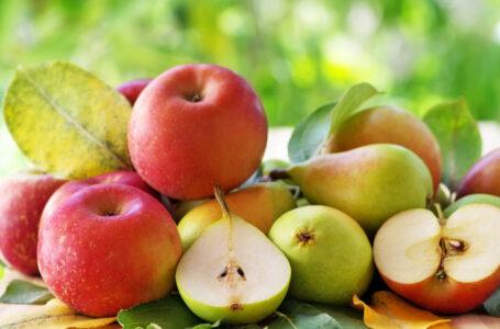 Voće koje čuva pluća