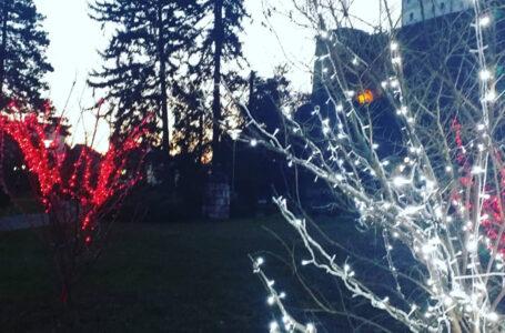 ČESTITKA GRADONAČELNIKA: Povodom 25.decembra katoličkog blagdana Božića
